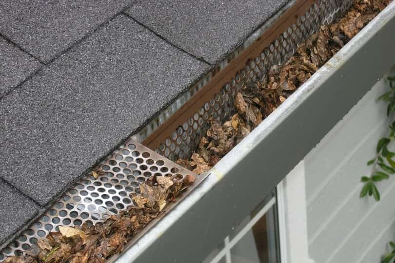 Gutter Blockage
